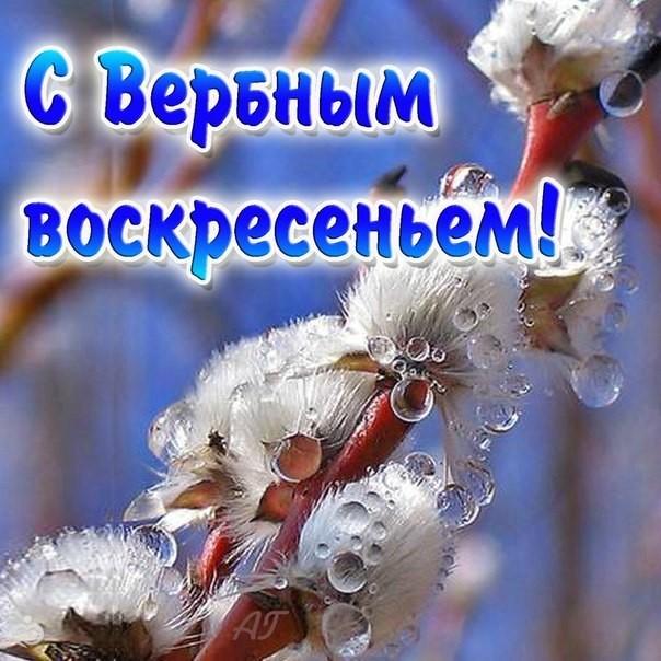 9 апреля вербное воскресенье поздравление