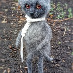 Грустный кот Тарди