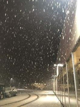Let it snow ❄️🌨🌬😍