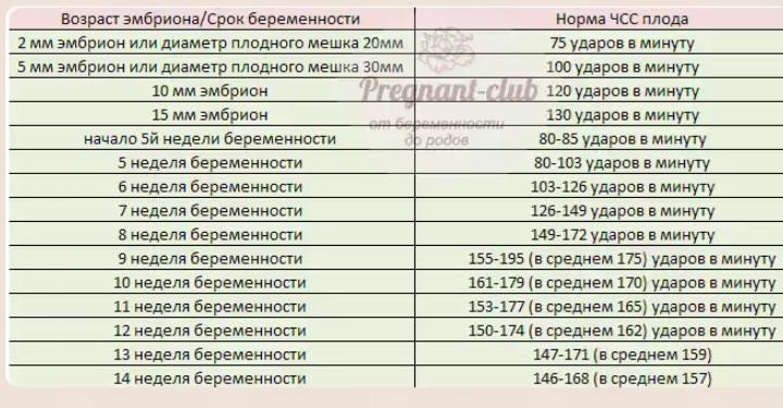Донецке чсс в 6 недель можете укоротить