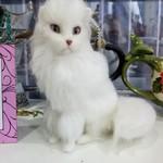 Ангорский кот Арни, 20 см