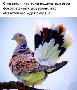 P_20170806_164336